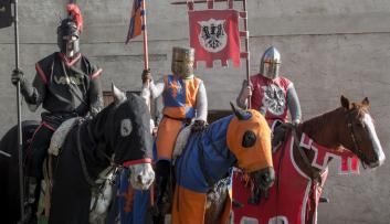 Große Rittershow