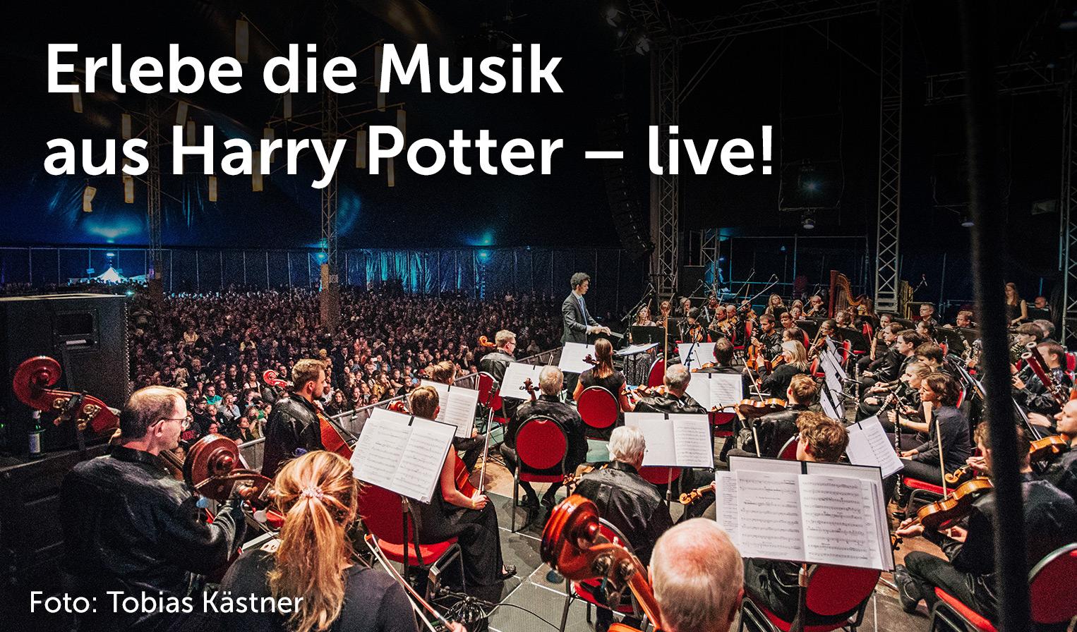 Elbenwald in Concert, Foto: Tobias Kästner